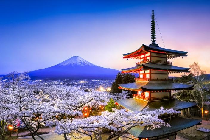 Chureito Pagoda at the Arakura Sengen Shrine at night with Mount Fuji during cherry blossom season in spring, Fujiyoshida, Japan