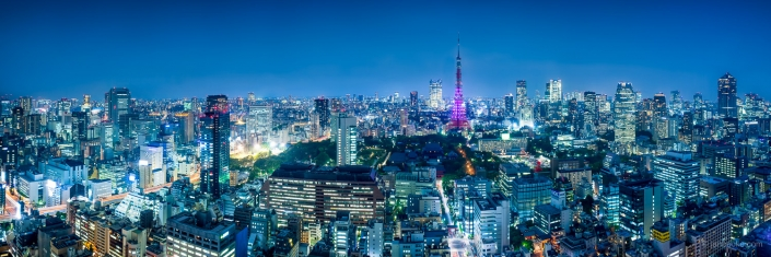 Tokyo skyline panorama at night with Tokyo Tower