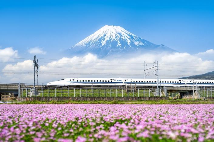 Shinkansen passing by Mount Fuji, Shizuoka Prefecture, Japan