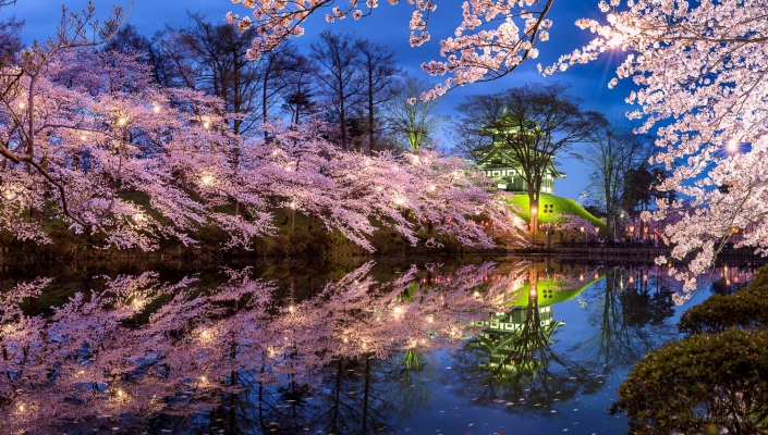 Takada castle in spring during the cherry blossom