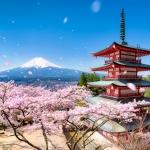 Chureito Pagoda of the Arakura Sengen Shrine during spring with Mount Fuji, Fujiyoshida, Japan
