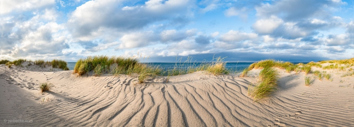 Dunes panorama at the North Sea on the island of Sylt