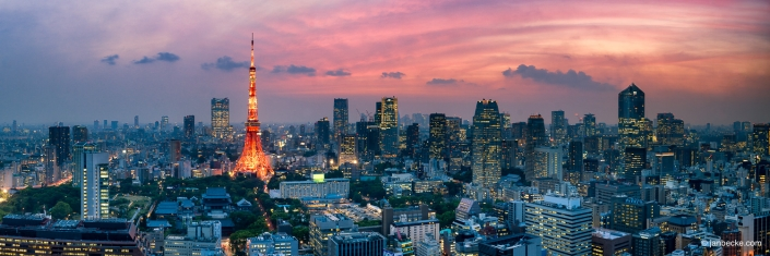 Tokyo skyline panorama at dusk with Tokyo Tower beeing illuminated with orange light