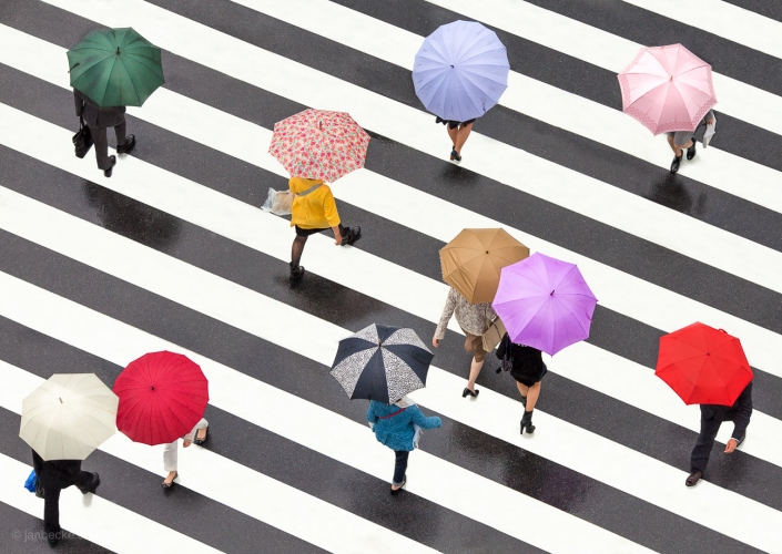 Pedestrians crossing a street during rain by holding colorful umbrellas