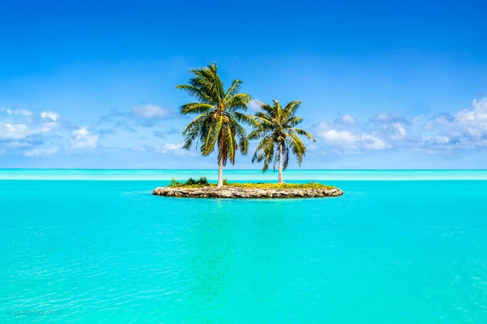 Small island with palm trees and turquoise water