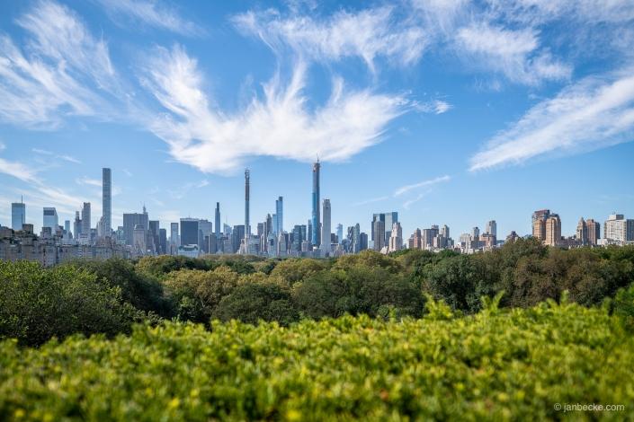 Central park in summer with Manhattan skyline view